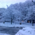 spring snow storm plowed area 2012-13