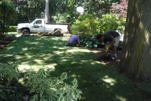 Etobicoke Landscaping