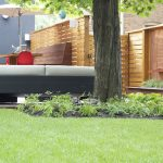Lawn Care for 2016 Toronto Heat Wave