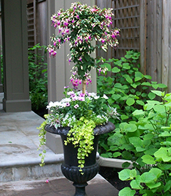 Beautifully placed urns around a porch of a house
