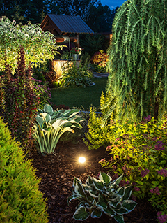 A beautifully illuminated garden at Night