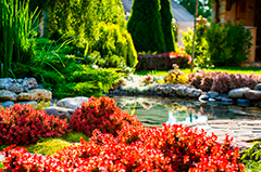 Beautiful landscape design with red flowers and pond