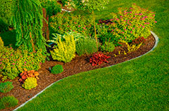 Newly Designed Garden in a Property in Bridle Path