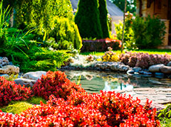 A Pond and Beautiful Landscaping Done in Backyard of a House in Bridle Path